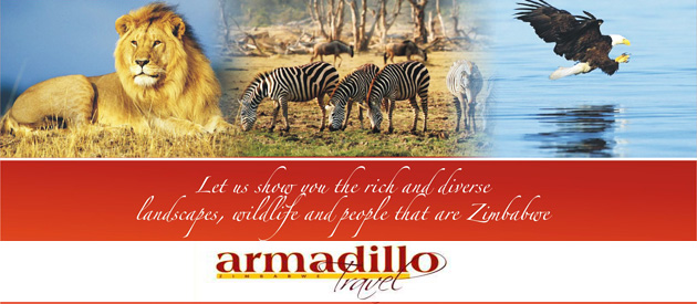 ARMADILLO TRAVEL, HARARE