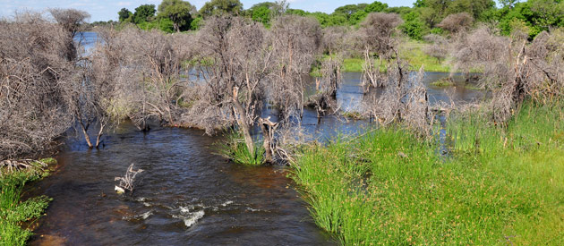 Mopipi, in the Central District of Botswana